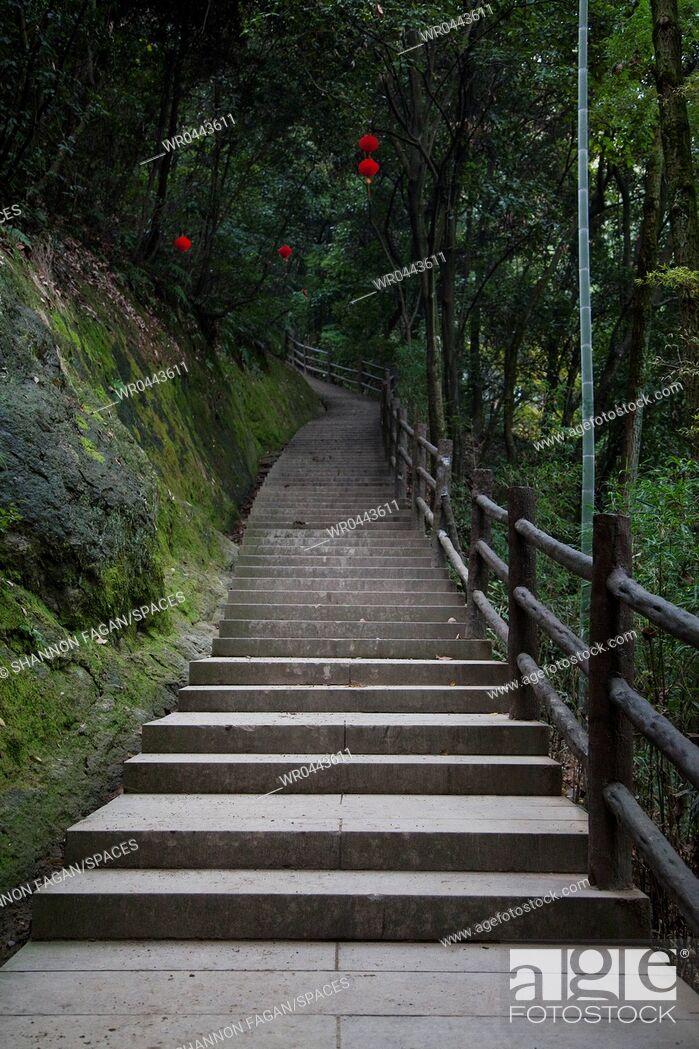 Imagen: Concrete Stairway in the Woods.