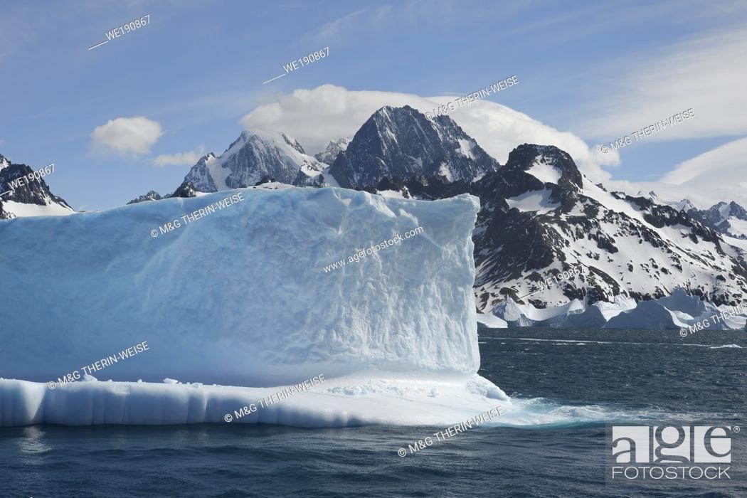 Imagen: Drygalski Fjord, Floating Icebergs, South Georgia, South Georgia and the Sandwich Islands, Antarctica.