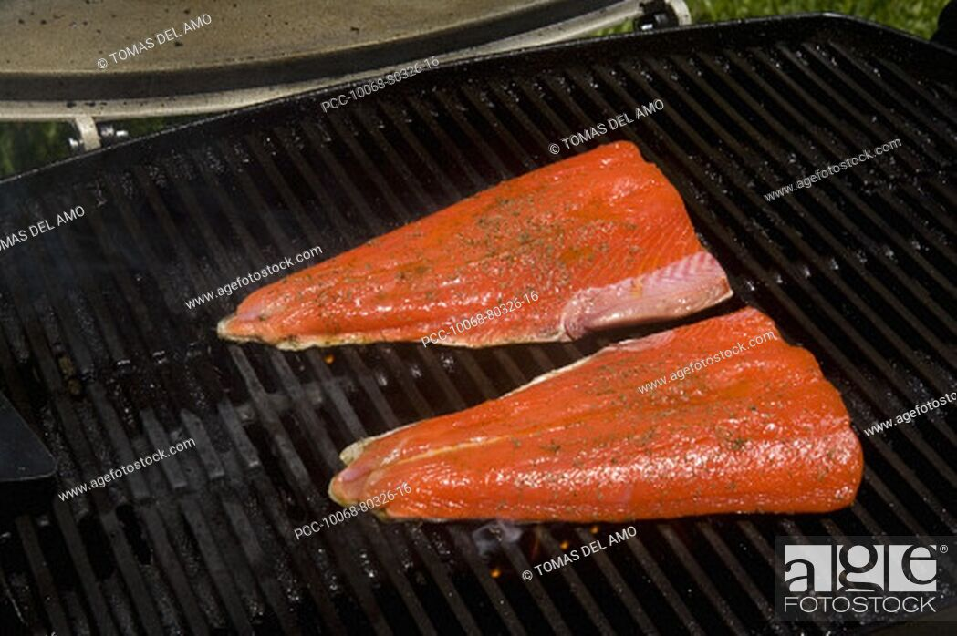 Stock Photo: Barbecue scene, Salmon steaks on the grill.