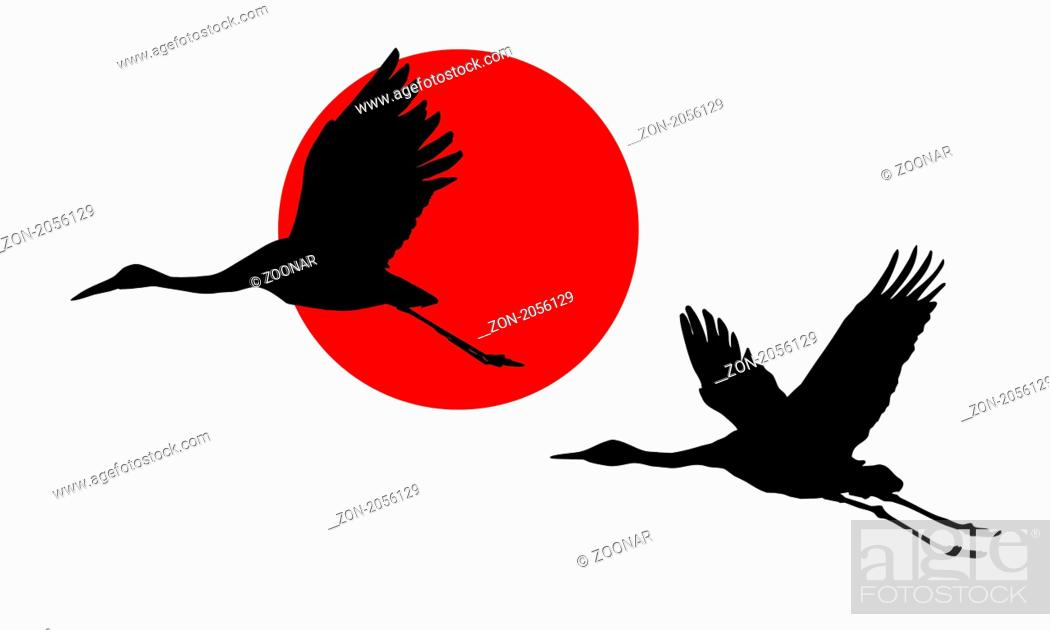 Stock Photo: vector illustration of the cranes in sky on background red sun.
