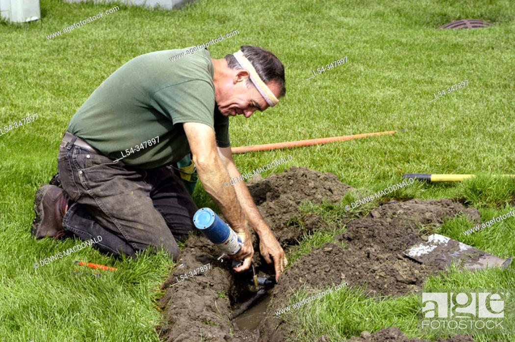 Stock Photo: retired adult man working in second career installing lawn irrigation.