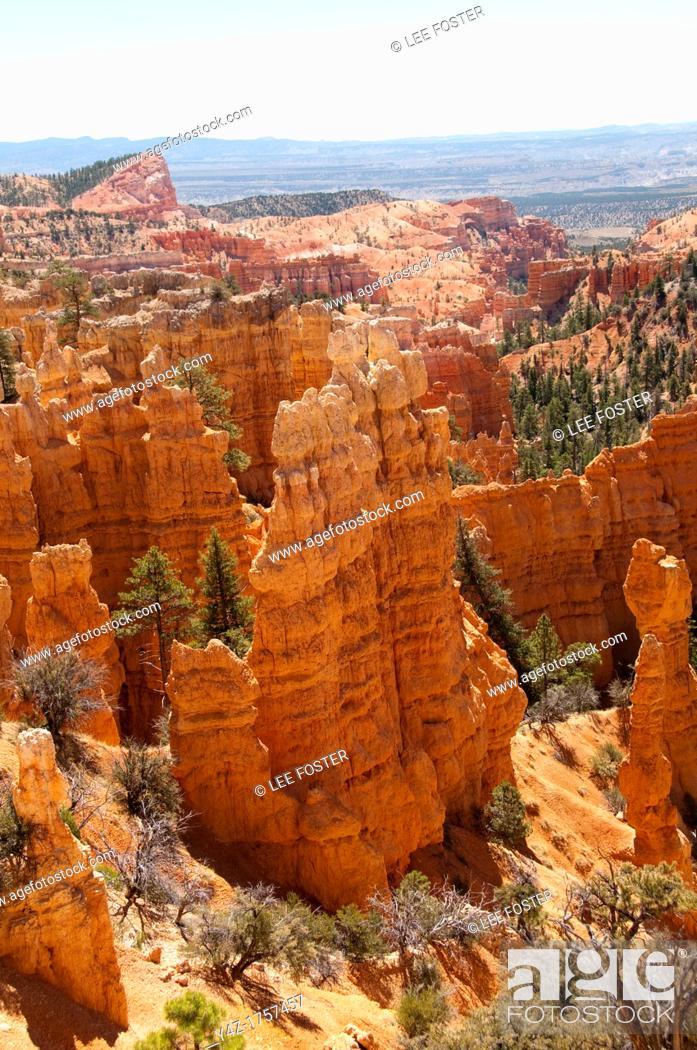 Stock Photo: USA, Utah, striking hoodoo land forms at Fairyland view at Bryce Canyon National Park.