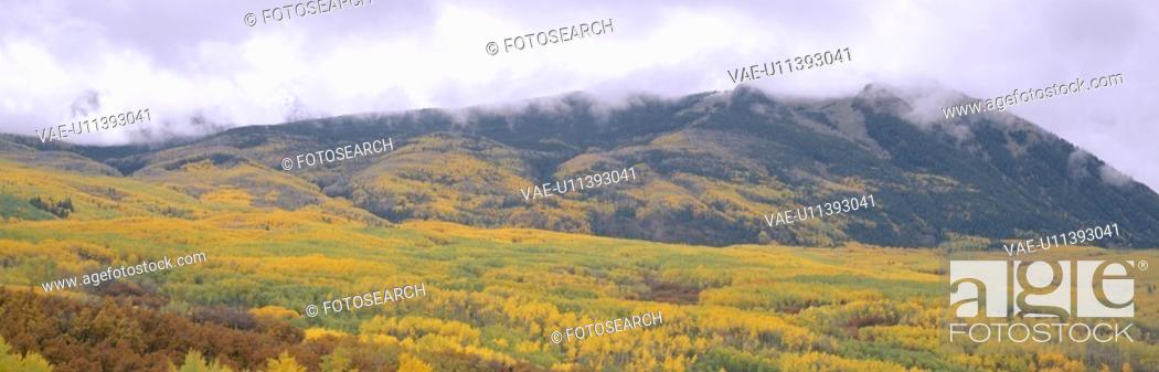 Stock Photo: Autumn clouds at Kebler Pass, Gunnison National Forest.