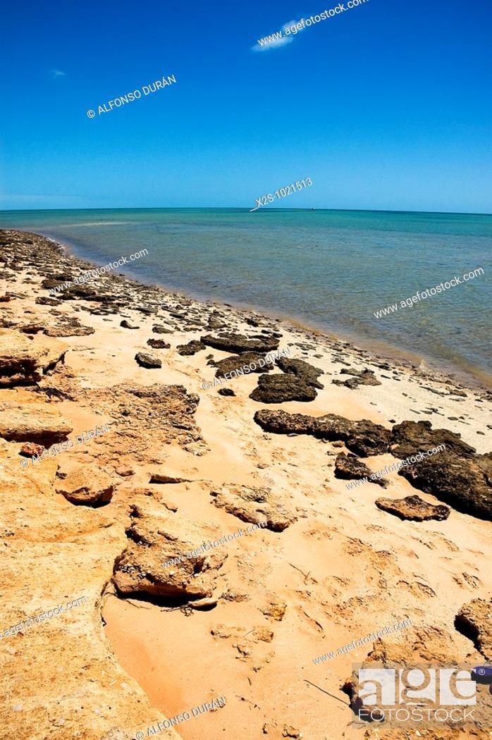 Stock Photo: Monkey Mia, Western Australia, Australia.