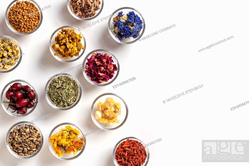 Stock Photo: Mullein, horsetail, milk thistle, calendula and other dried herbs in bowls on a white background.