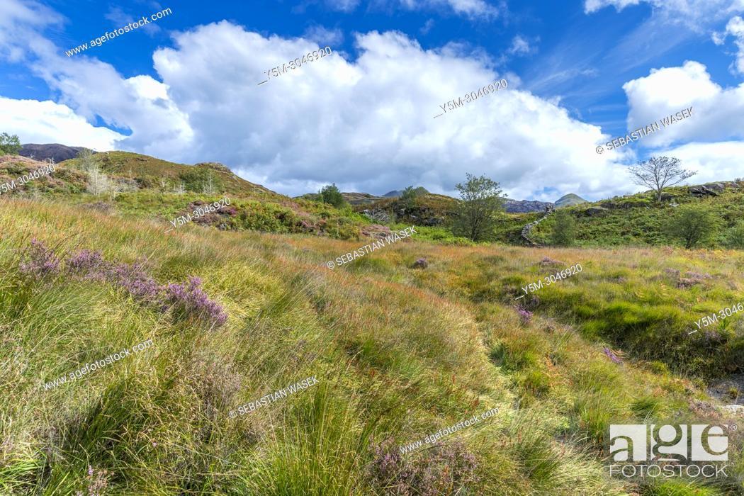 Stock Photo: Cwm Bychan and Aberglaslyn Pass walk, Snowdonia National Park, Beddgelert, Gwynedd, Wales, UK, Europe.