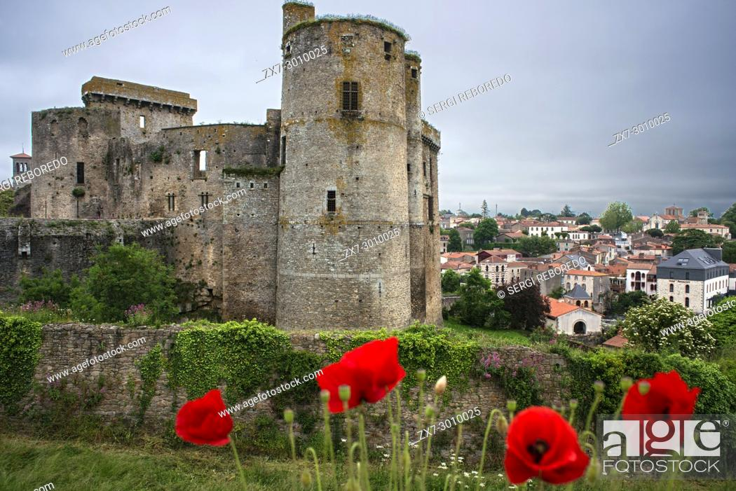 Stock Photo: Clisson village with the castle in the Sevre Nantaise river, Nantes, Loire Atlantique, France.