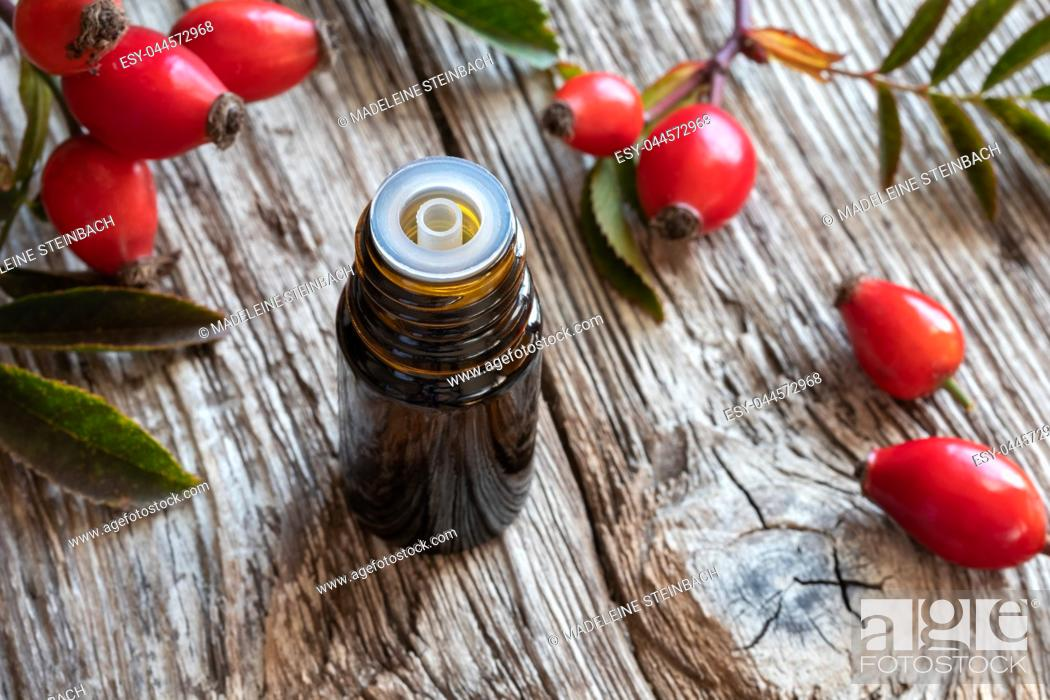Stock Photo: A bottle of rose hip seed oil with fresh berries and leaves.
