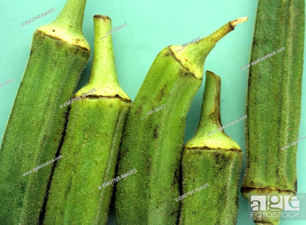 Stock Photo: Lady's fingers Hibiscus esculentus.