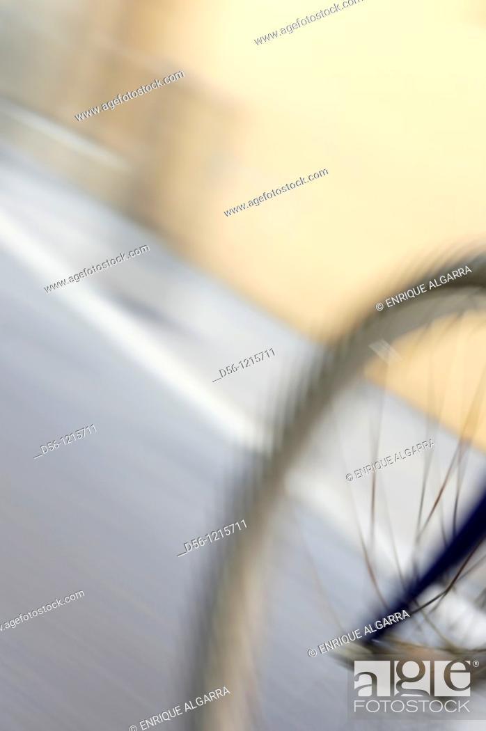 Stock Photo: Bicycle wheel.