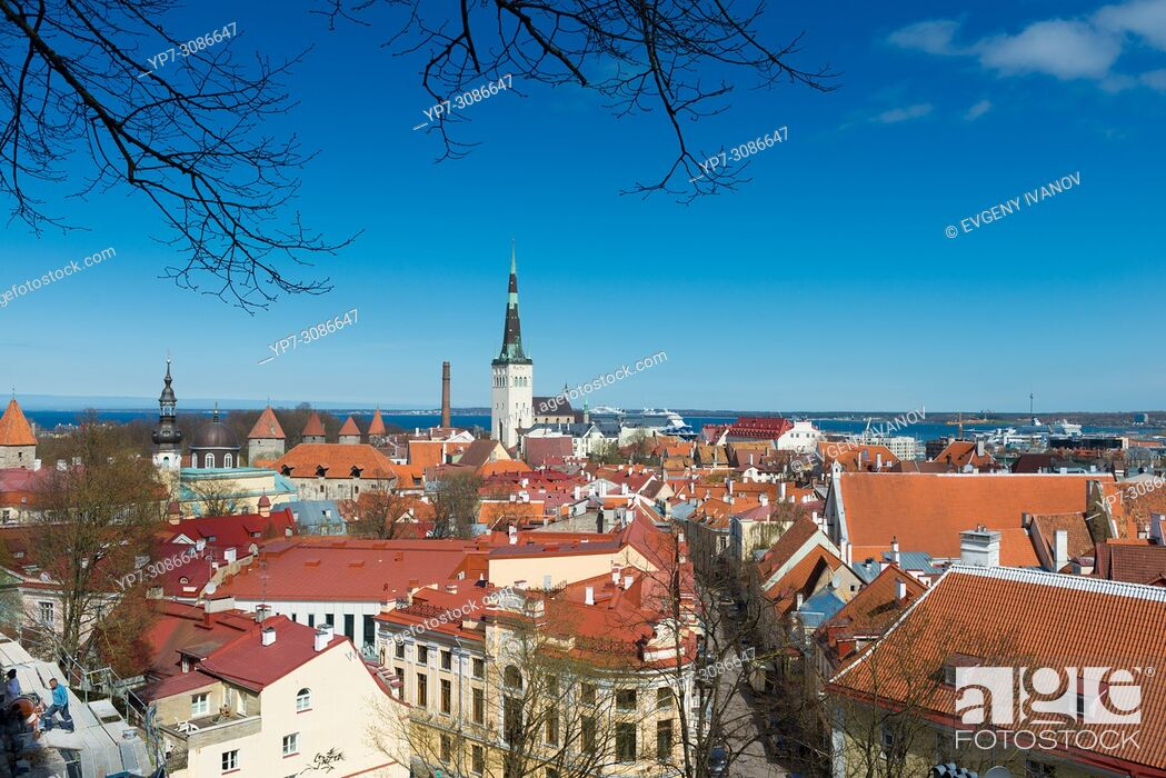 Stock Photo: Panorama of Old Town of Tallinn, Estonia.