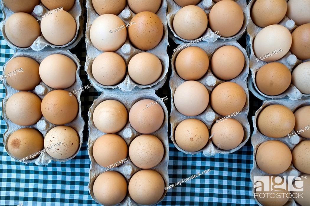 Stock Photo: Brown eggs.