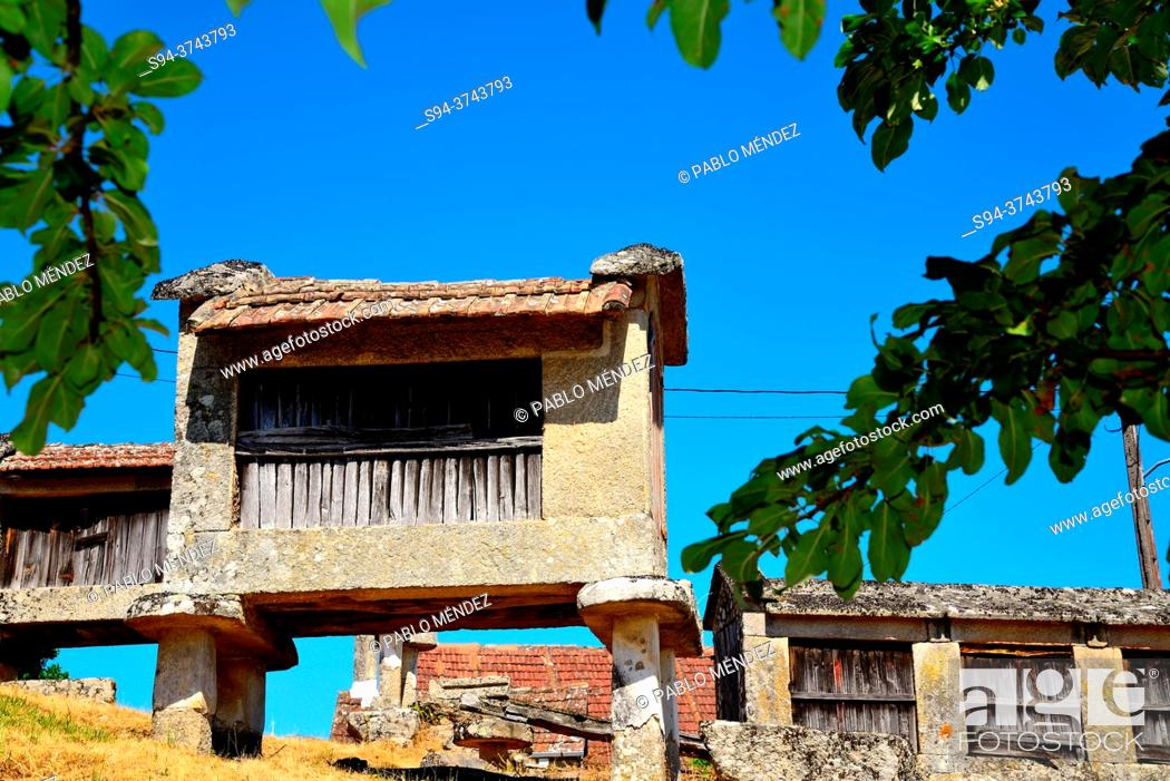 Stock Photo: Horreos or Raised Granaries in Quins, Melon, Orense, Spain.
