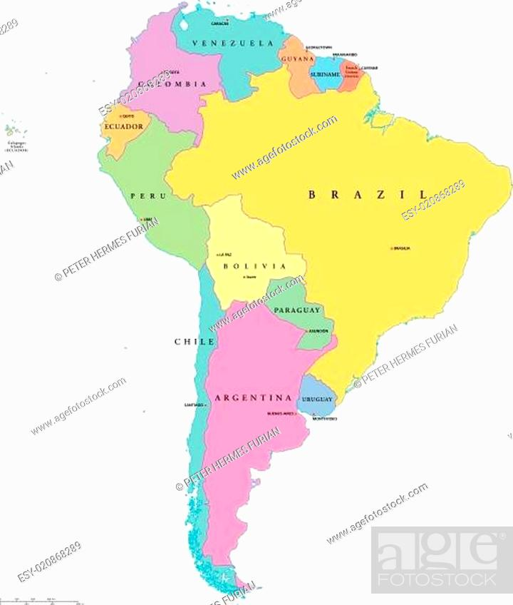 Stock Vector: South America Single States Map.