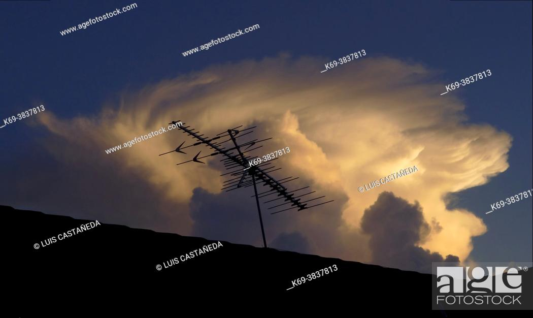 Stock Photo: TV Antenna.