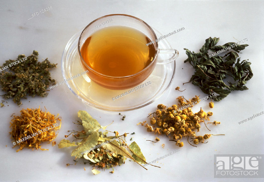 Stock Photo: A Cup of Tea Surrounded by Loose Tea.