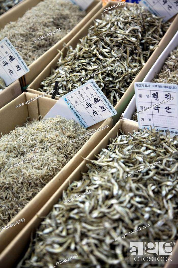 Stock Photo: The famous fish market of the harbour city of Busan in the south of the Republic of South Korea.