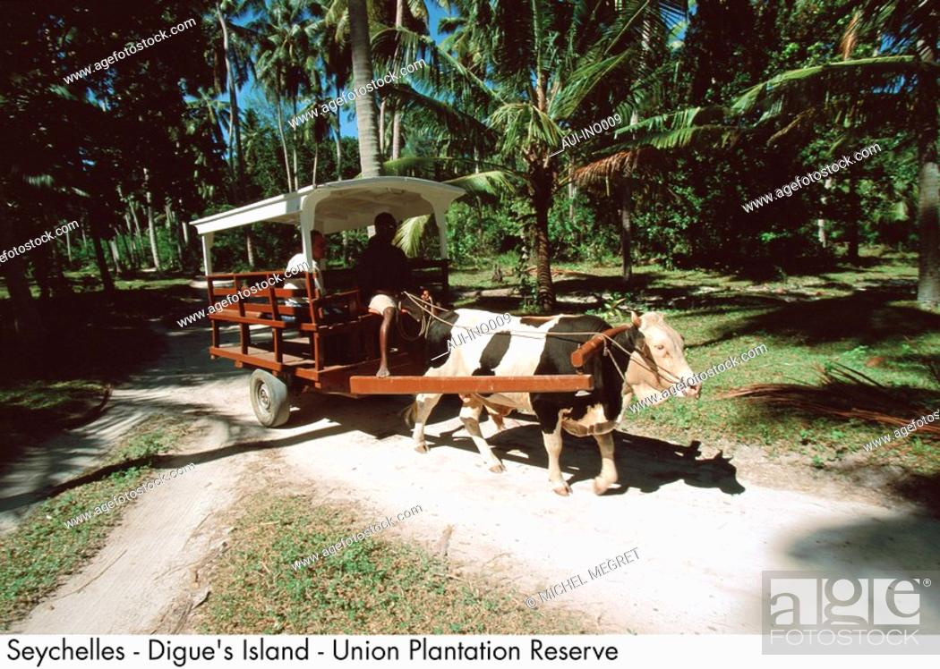 Stock Photo: Seychelles - Digue's Island - Union Plantation Reserve.