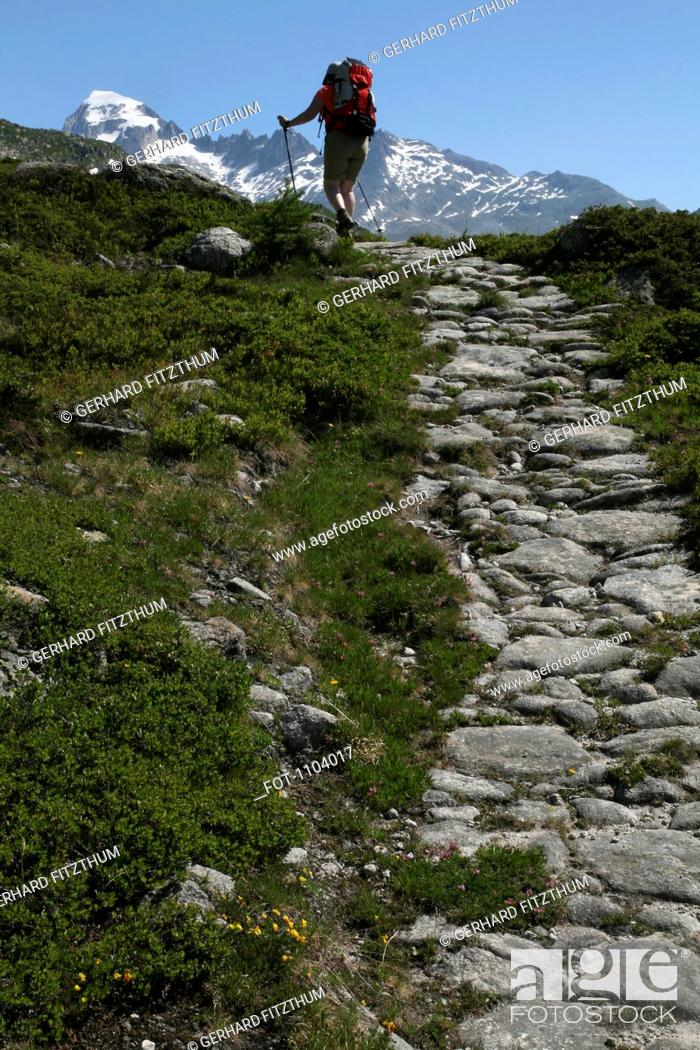 Stock Photo: A hiker on a footpath, Valais Canton, Switzerland.