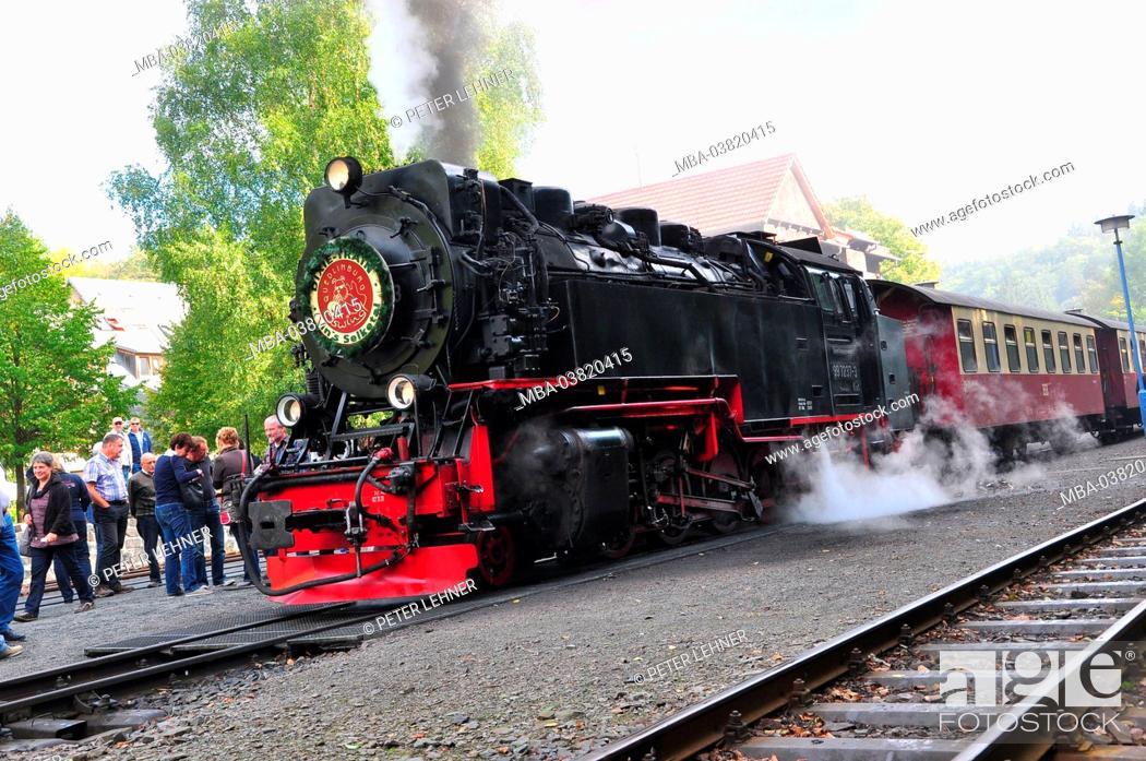 Stock Photo: Germany, Saxony-Anhalt, Ostharz, steam train, nostalgically, Harz Narrow Gauge Railways,.