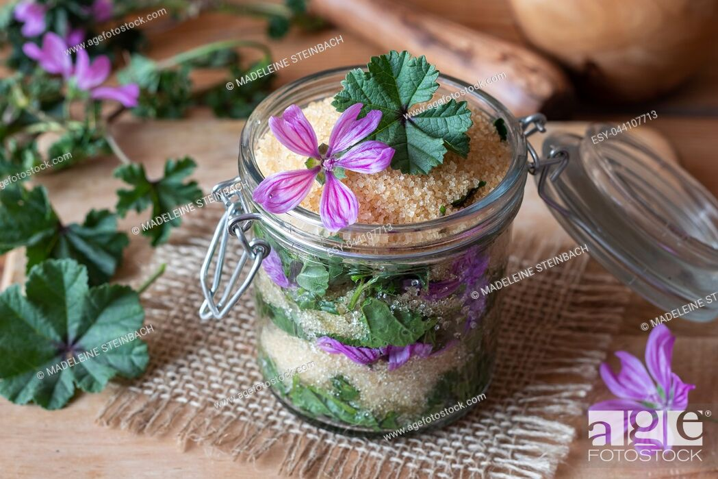 Stock Photo: A jar filled with common mallow flowers and leaves and cane sugar, to prepare herbal syrup against cough.