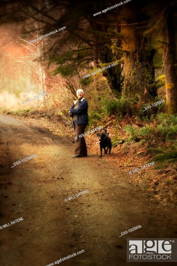 Stock Photo: woman hiker on forest path with dog.