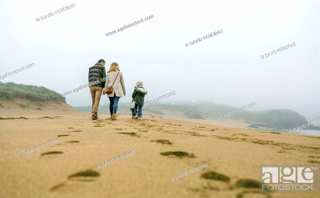 Stock Photo: Family walking with dog on the beach on a foggy winter day.