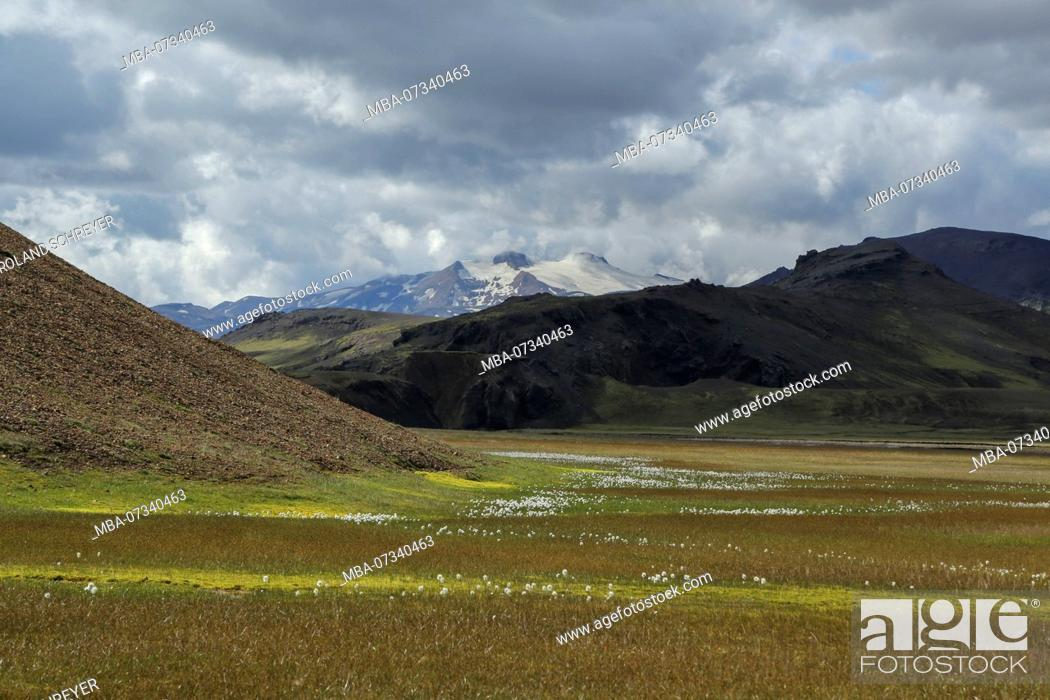 Stock Photo: Iceland, volcano Tindfjallajökull, cotton grass meadow, sun and clouds.