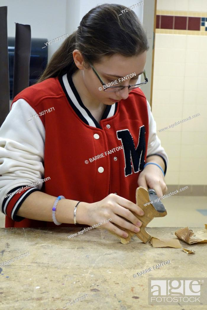 Stock Photo: 8th Grade Girl Using File in Technology Class, Wellsville, New York, USA.