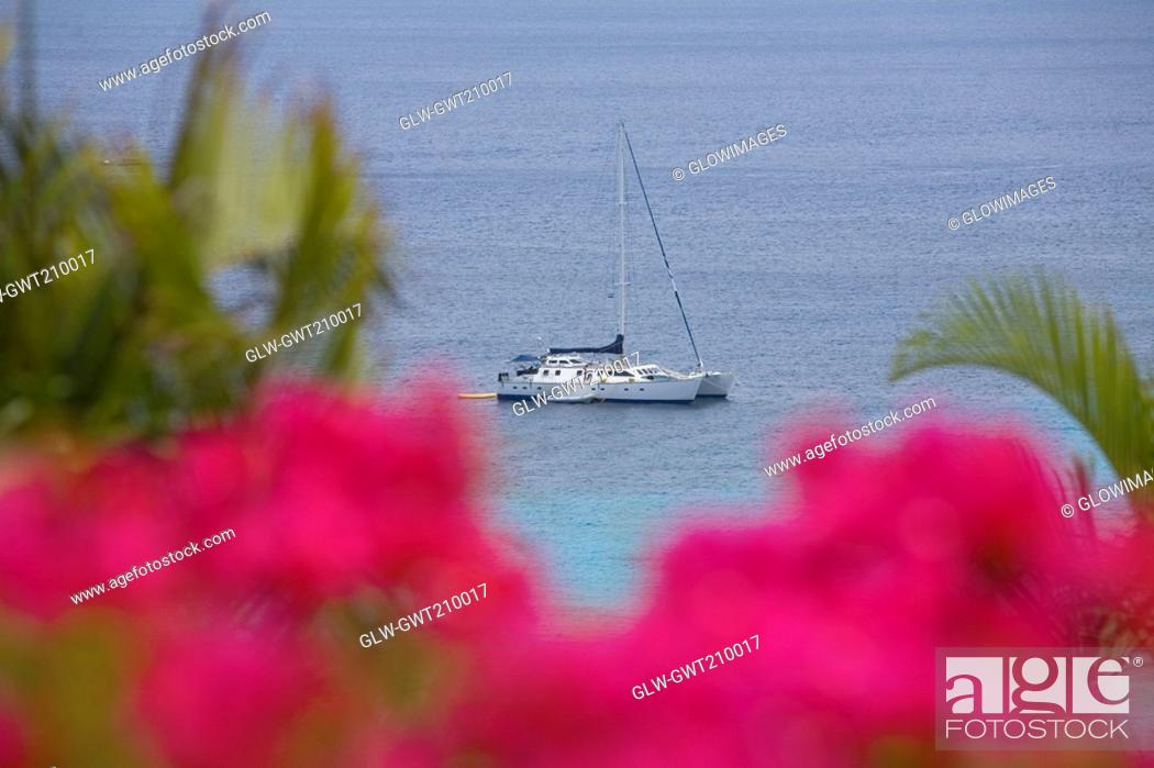Stock Photo: High angle view of a boat in the sea, Roatan, Bay Islands, Honduras.