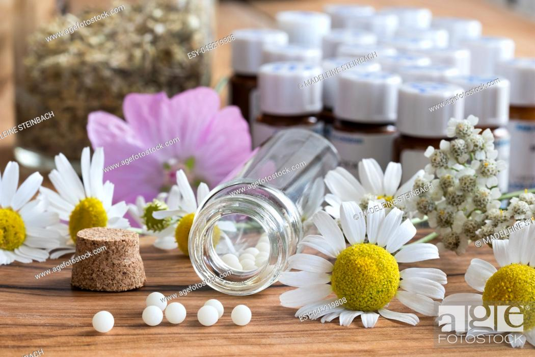 Stock Photo: A bottle of homeopathic globules with chamomile and other herbs and flowers in the background.