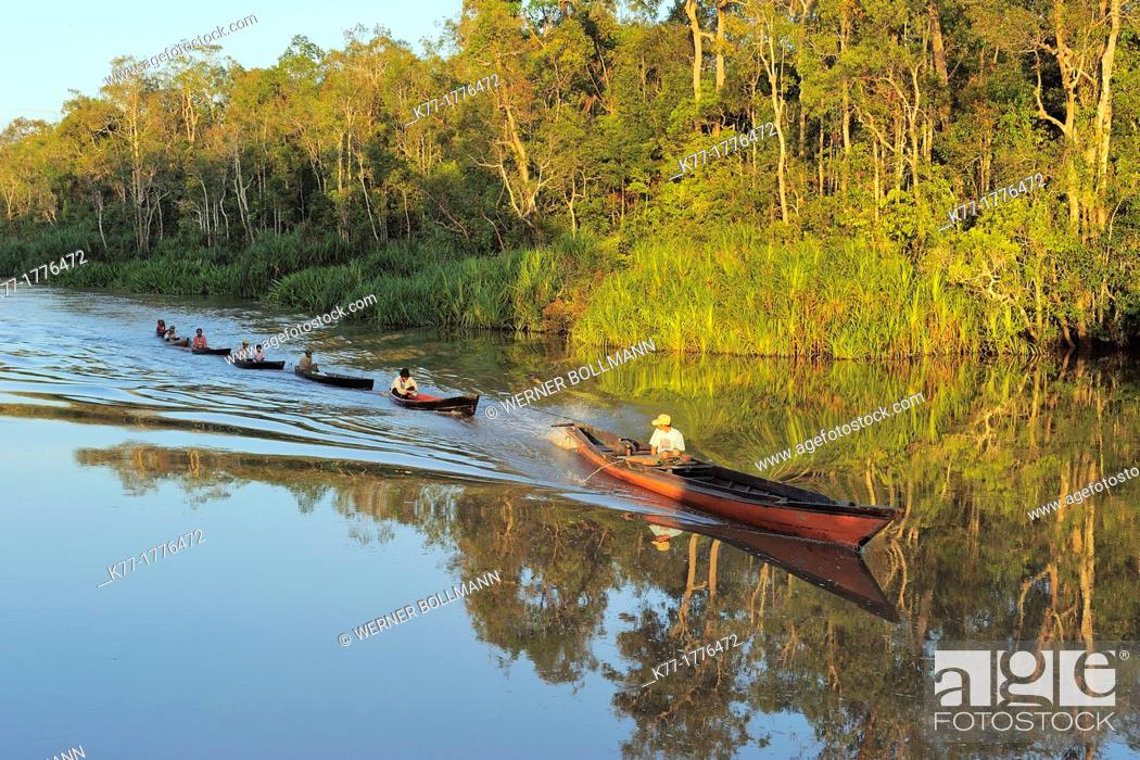 Stock Photo: Fishermen on the Sekonyer River, driving home after fishing, Province Kalimantan, Borneo, Indonesia.