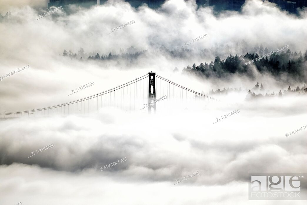 Stock Photo: Photo taken from Cypress Mountain of downtown Vancouver and Lions Gate Bridge.