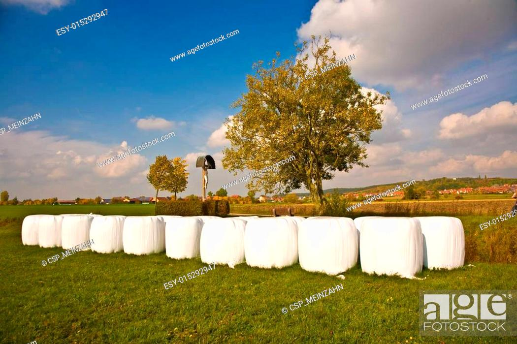Stock Photo: bale of straw in autumn in intensive colors.