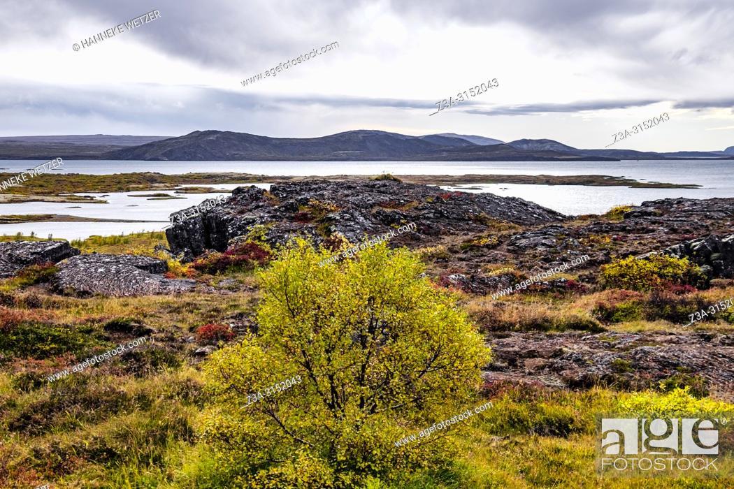 Imagen: Nature of Southwest Iceland.