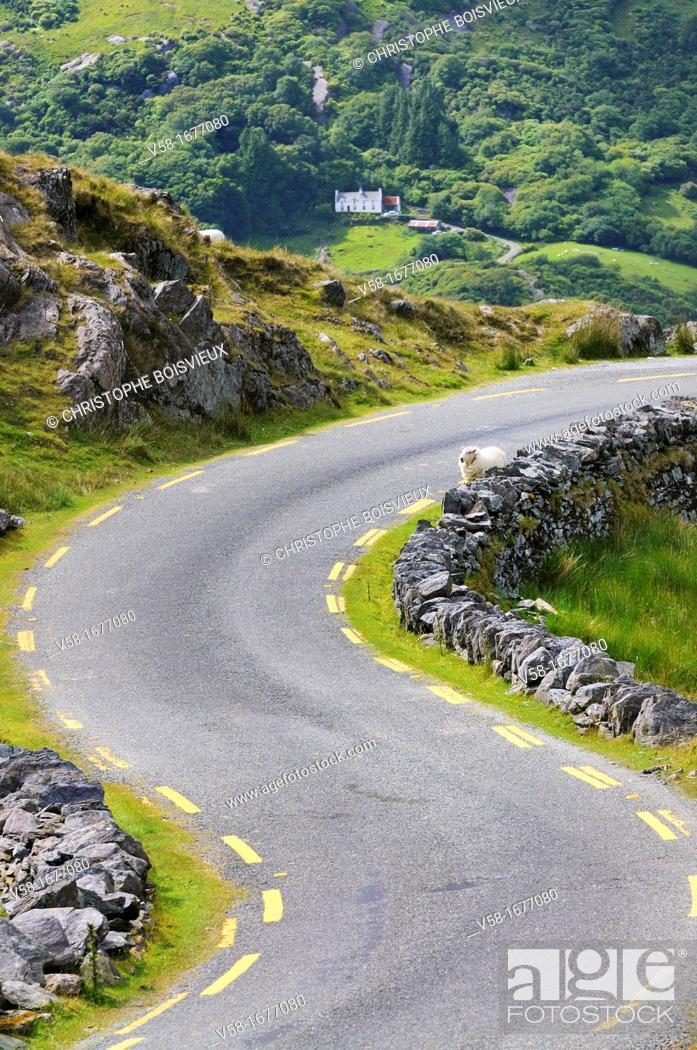 Stock Photo: Ireland, County Kerry, Beara peninsula, Healy pass 334 m.