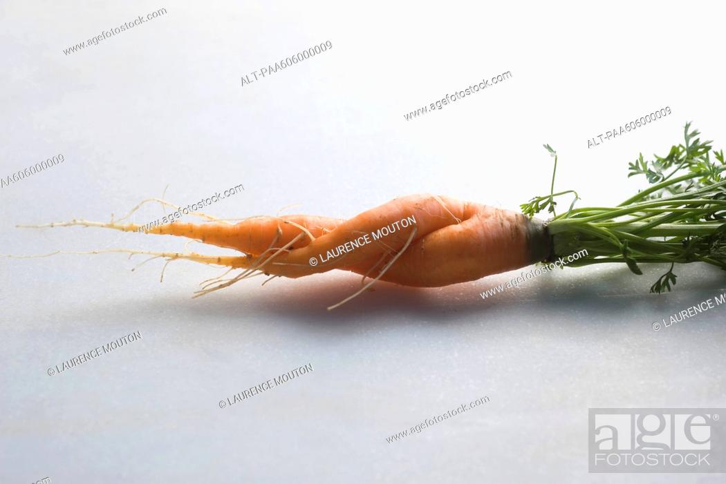 Stock Photo: Twisted carrot.