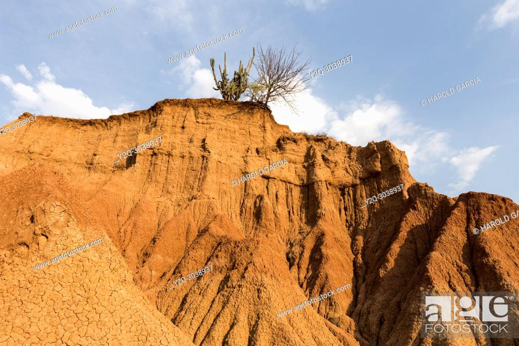 Imagen: Scenic View Of Tatacoa desert red zone with blue sky, Huila, Colombia.