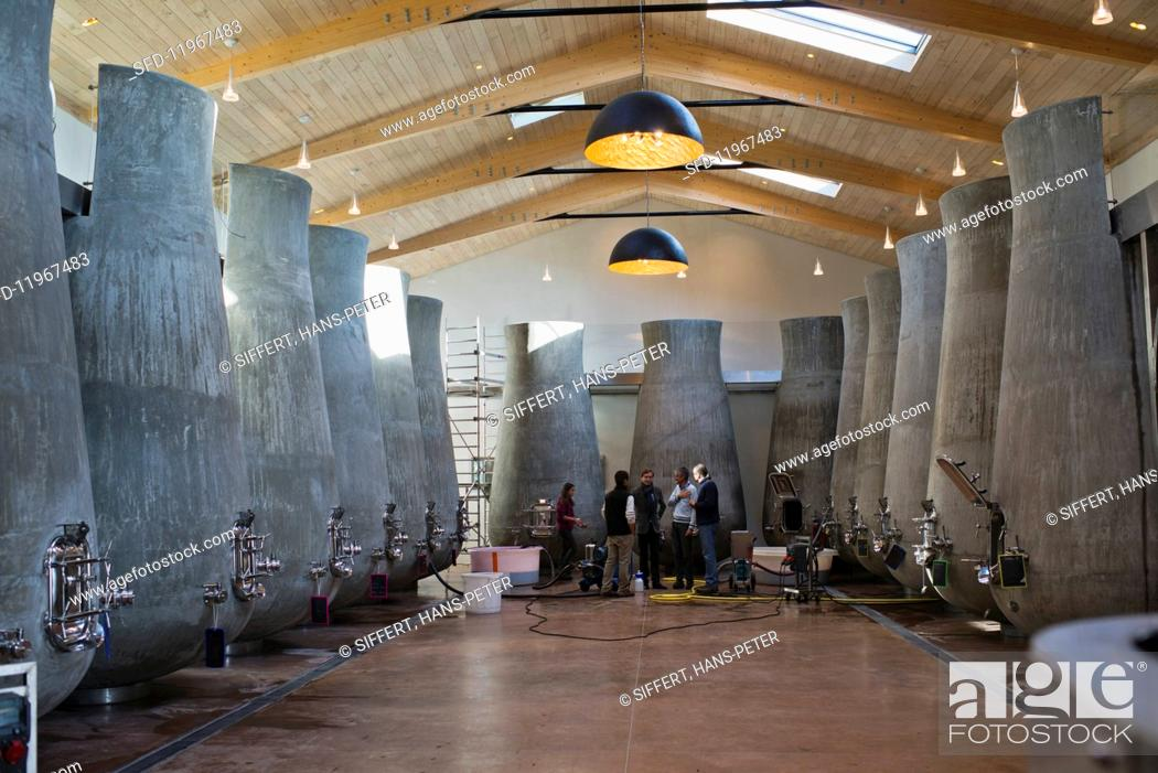 Stock Photo: A modern vinification cellar with organically shaped concrete tanks (Beauregard, France).