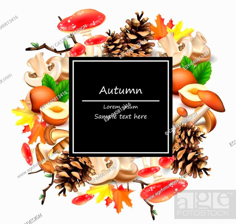Stock Vector: Forest card decor with mushrooms, nuts, leaves, pinecone Vector. Autumn background.