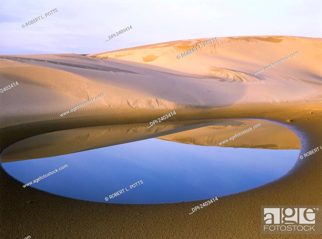 Stock Photo: An ephemeral pond mirrors the Umpqua Dunes, Oregon Dunes National Recreation Area; Lakeside, Oregon, United States of America.