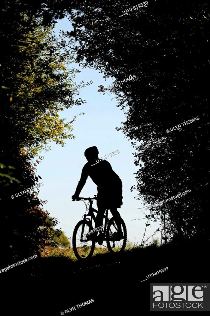 Stock Photo: Mountain biker.