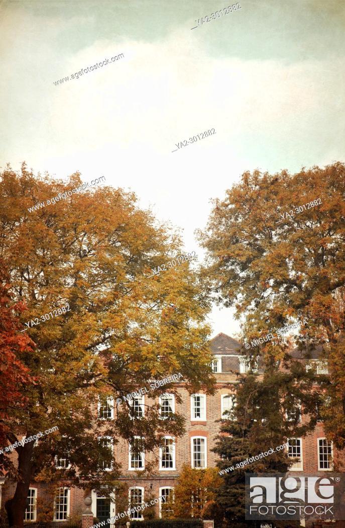 Imagen: Georgian Terrace in Autumn , England.