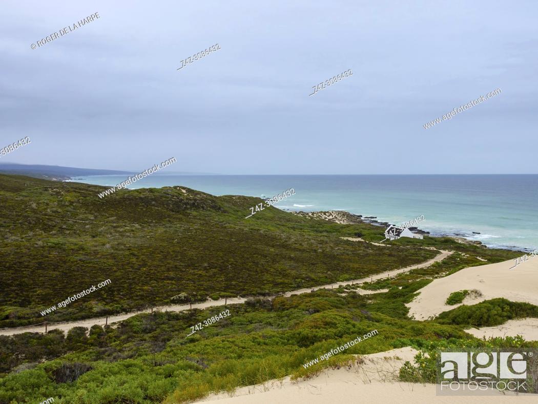 Imagen: Coastal dunes at De Hoop Nature Reserve. Western Cape. South Africa.