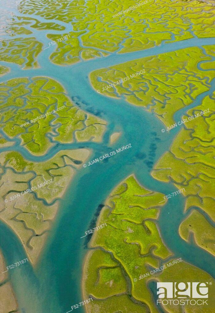 Stock Photo: Aerial view on marshlands, Bahia de Cadiz Natural Park. Costa de la Luz, Cadiz province, Andalucia, Spain.