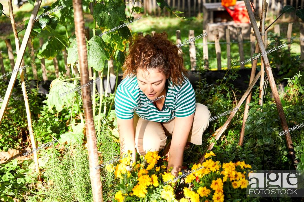 Stock Photo: Young brunette woman gardening.