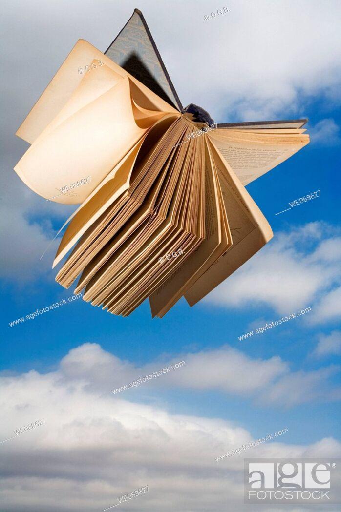Stock Photo: Book in flight.