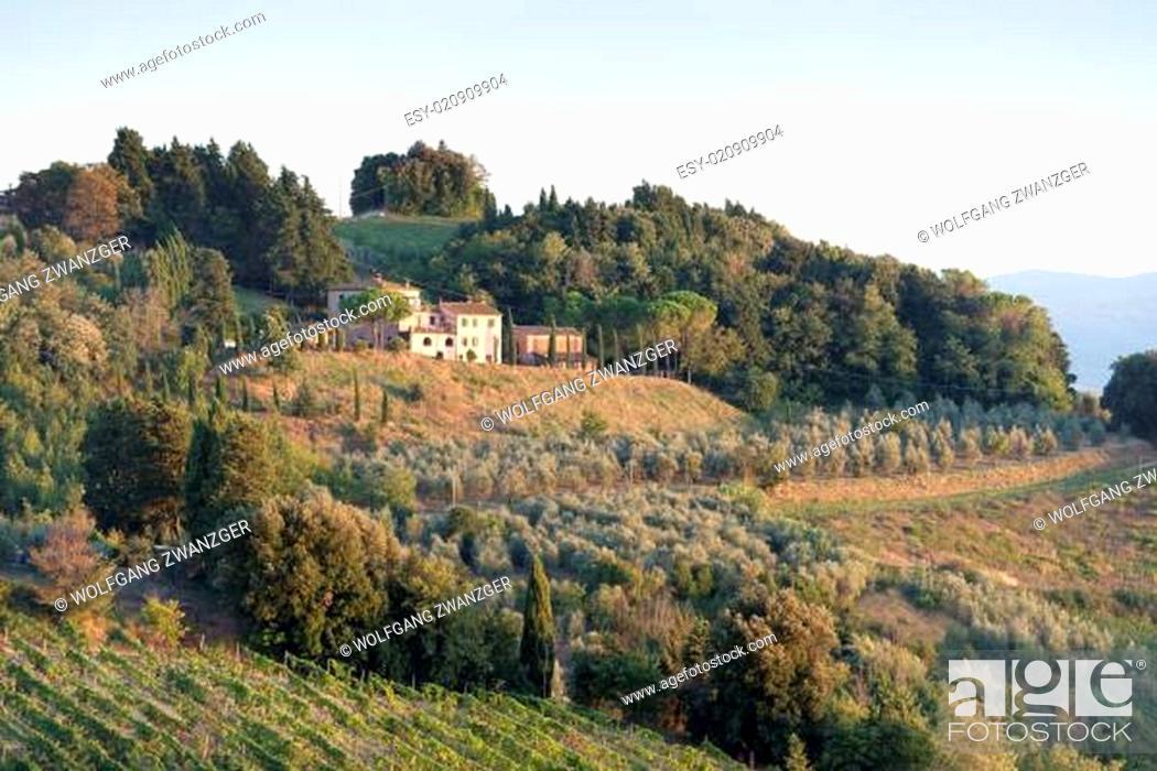 Stock Photo: Evening in Tuscany.