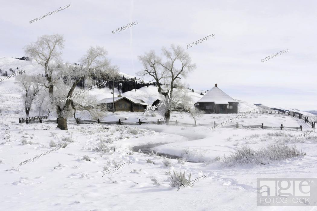 Stock Photo: Yellowstone Association Institute in Lamar Valley. Soda Butte area trees with hoar frost on them.