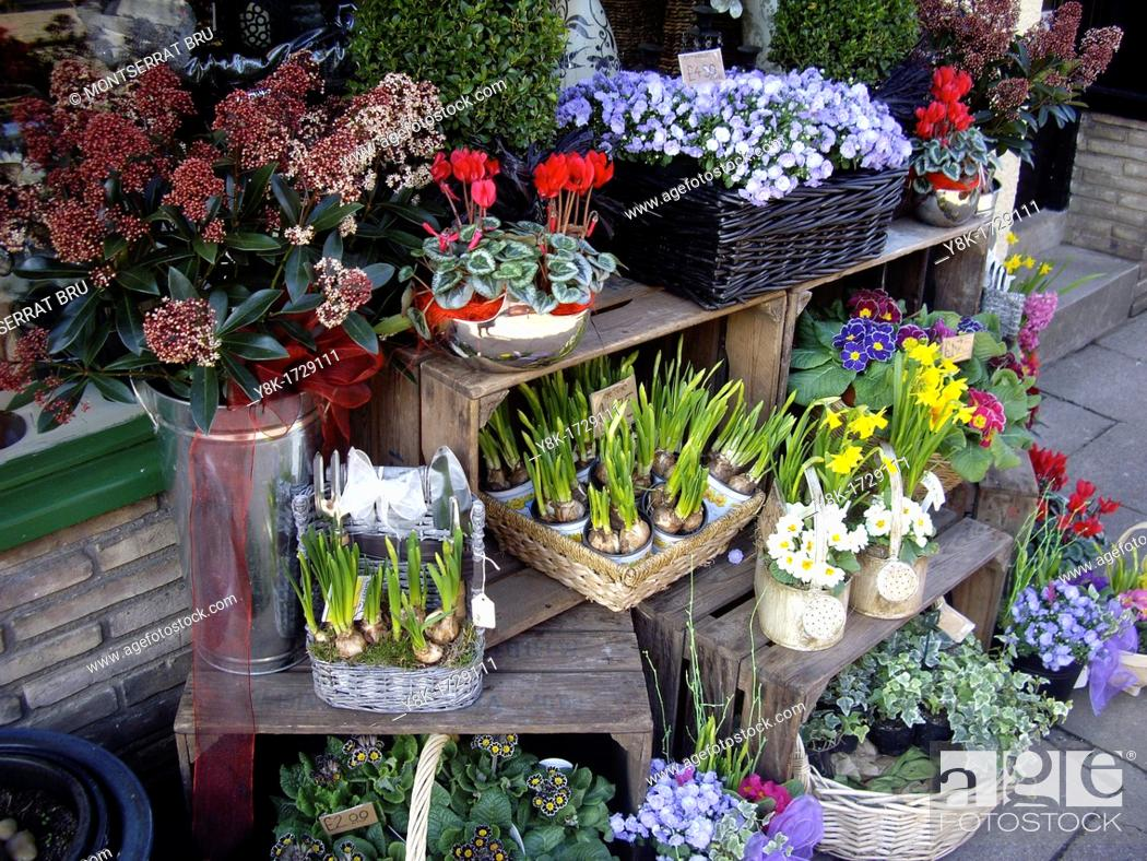 Imagen: Flower shop with early spring display in Bury St Edmunds, Suffolk, UK.